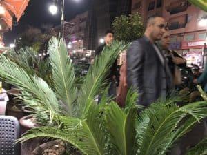 Kommunikation i Marocko